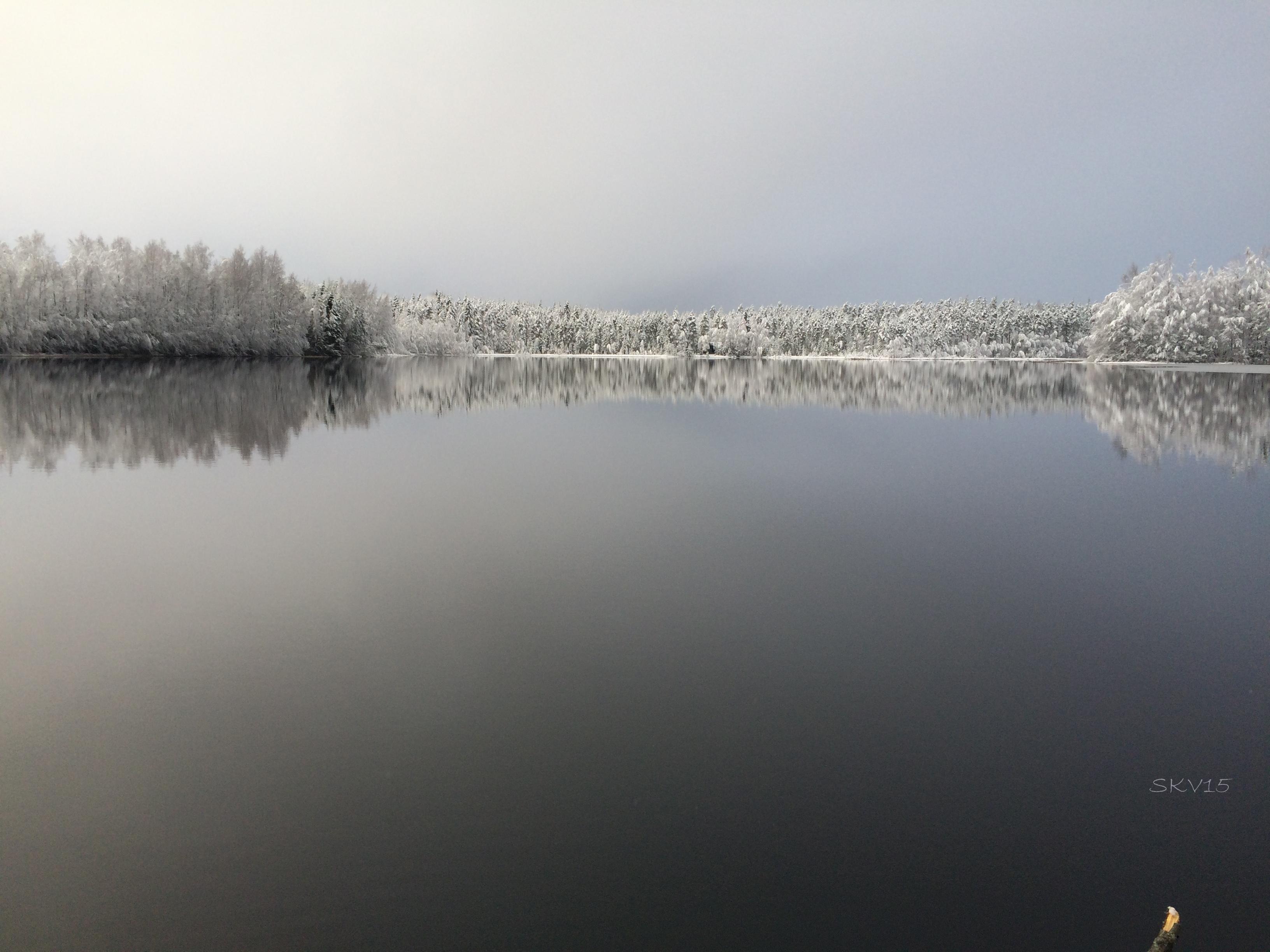 Lautaporras: Pitkäjärvi, Tammela