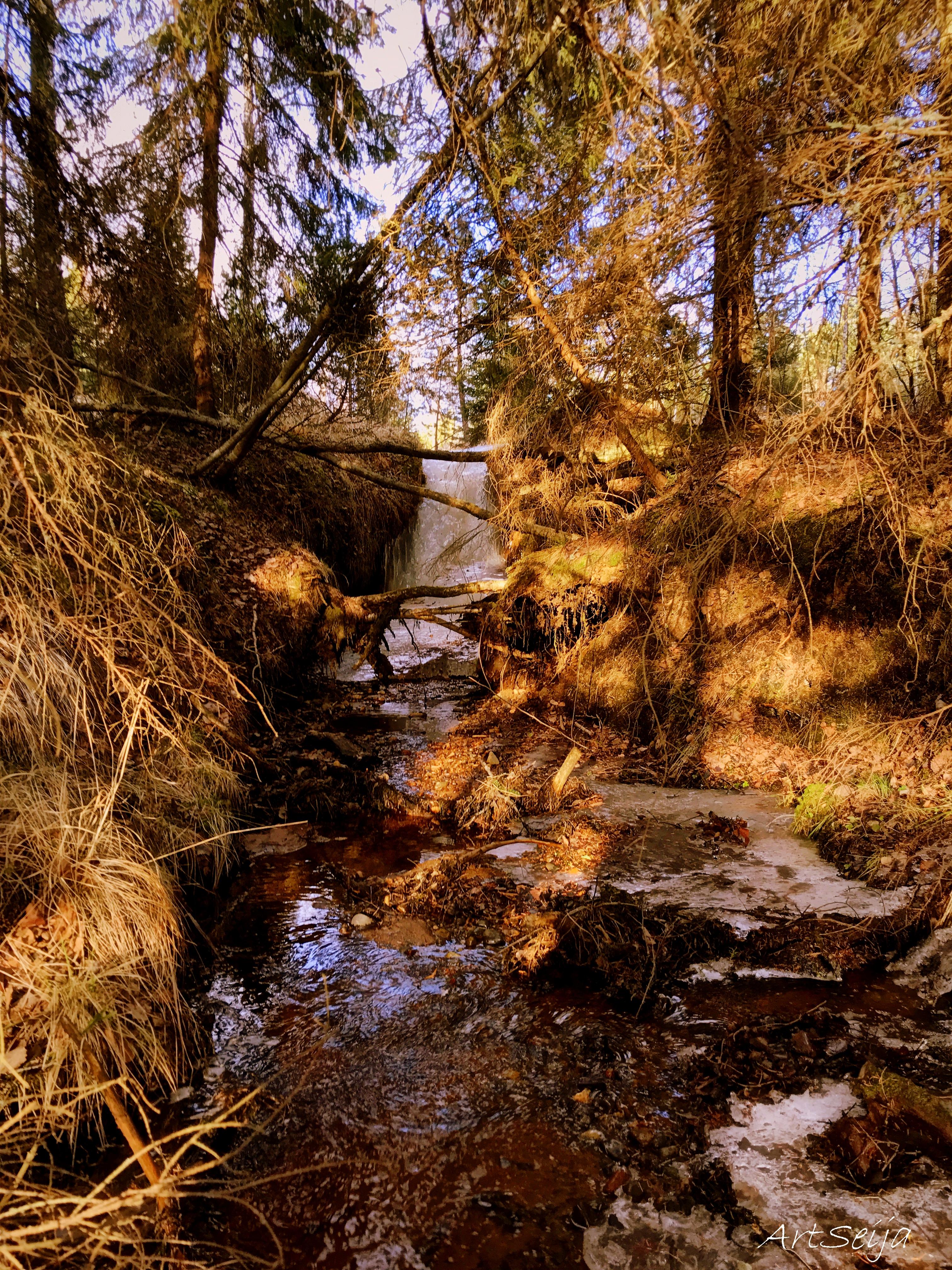 Olli-Pekan puro: Mäyränlahti, Lahmajärvi, Urjala