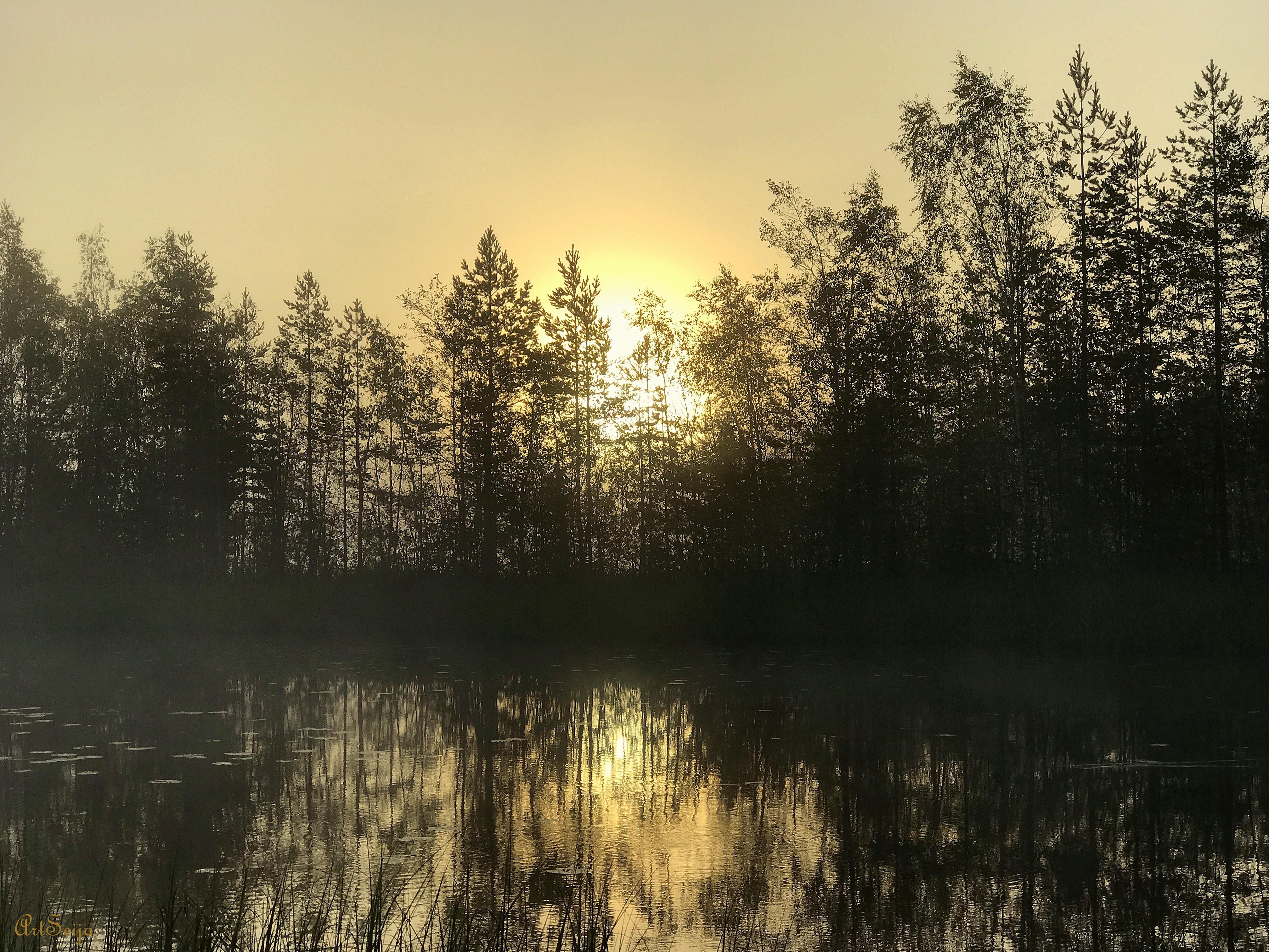 Mäyränlahden poukama: Lahmajärvi, Urjala