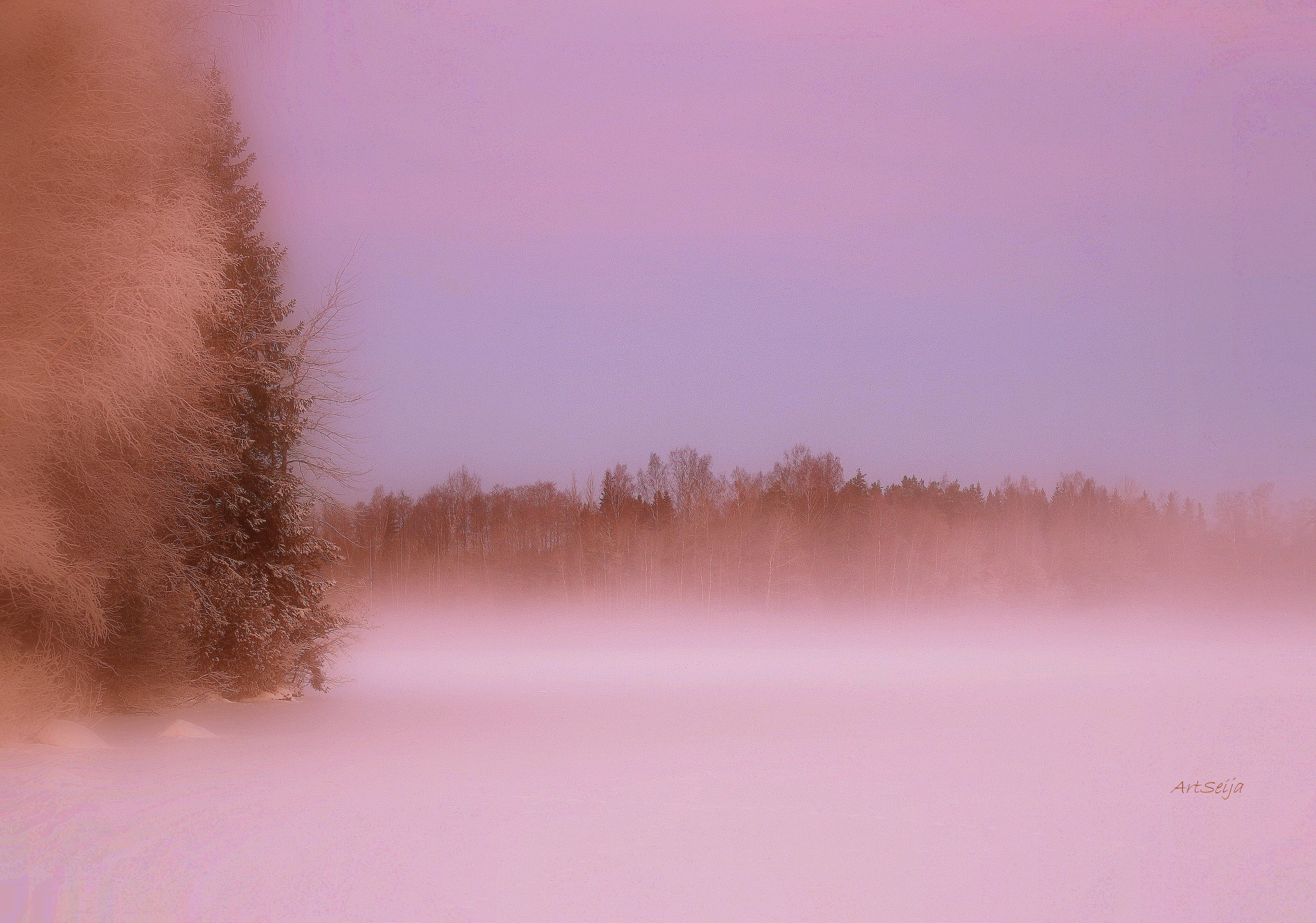 Talvinen Lahmajärvi, Urjala