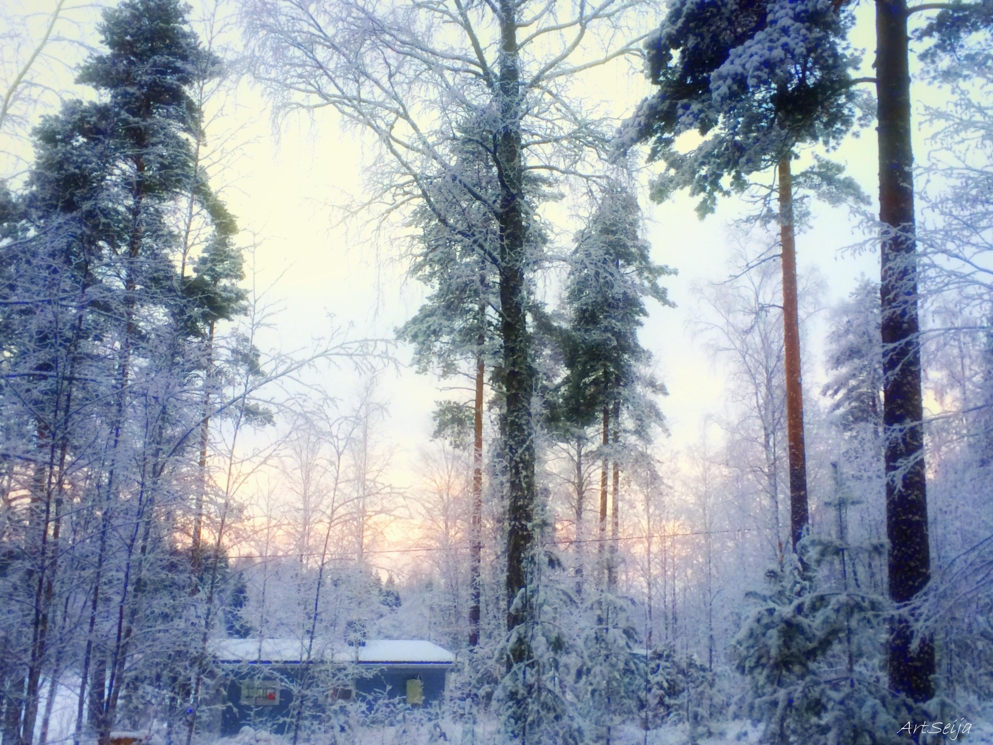 Talvinen mökki: Lahmajärvi, Urjala